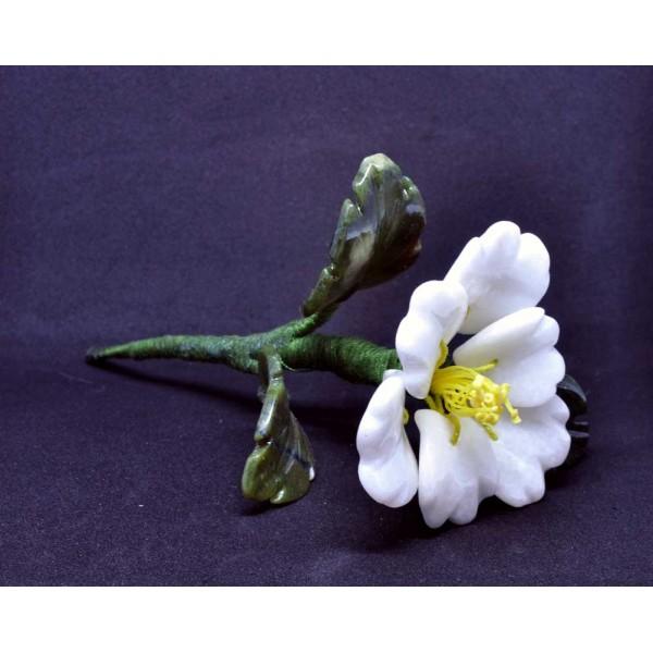 Каменный цветок - Кальцит.